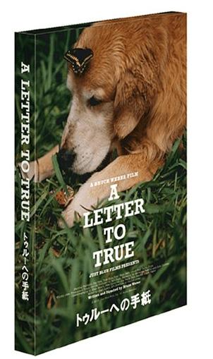 トゥルーへの手紙